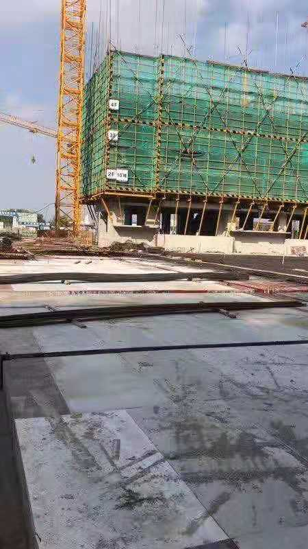Waterproof PP Plastic Sheet for Construction Formwork